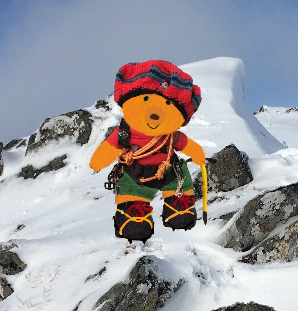Munro The Mountaineering Bear